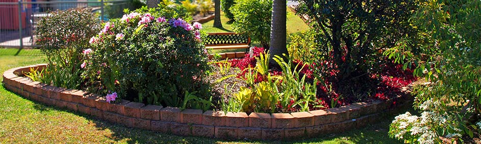 Gardens and pool area at Lancaster Court Motel Annerley Brisbane